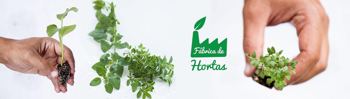 Fábrica de Hortas