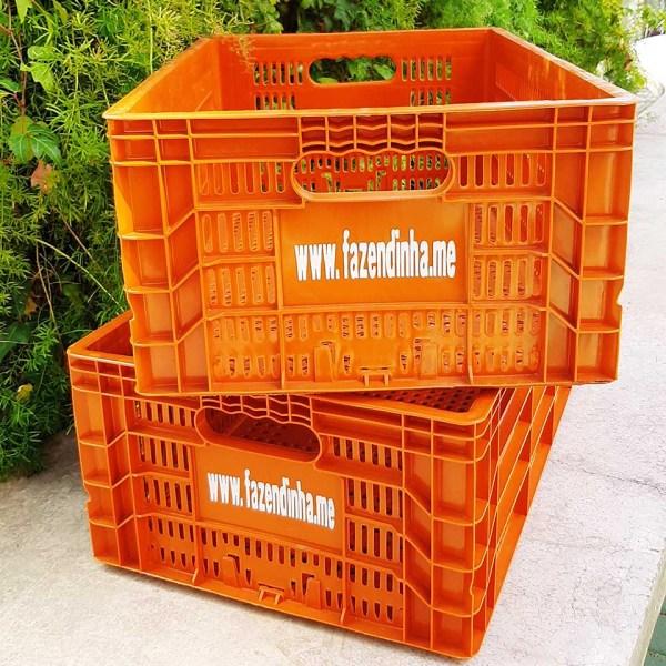 Caixa de compras retornável Fazendinha em Casa