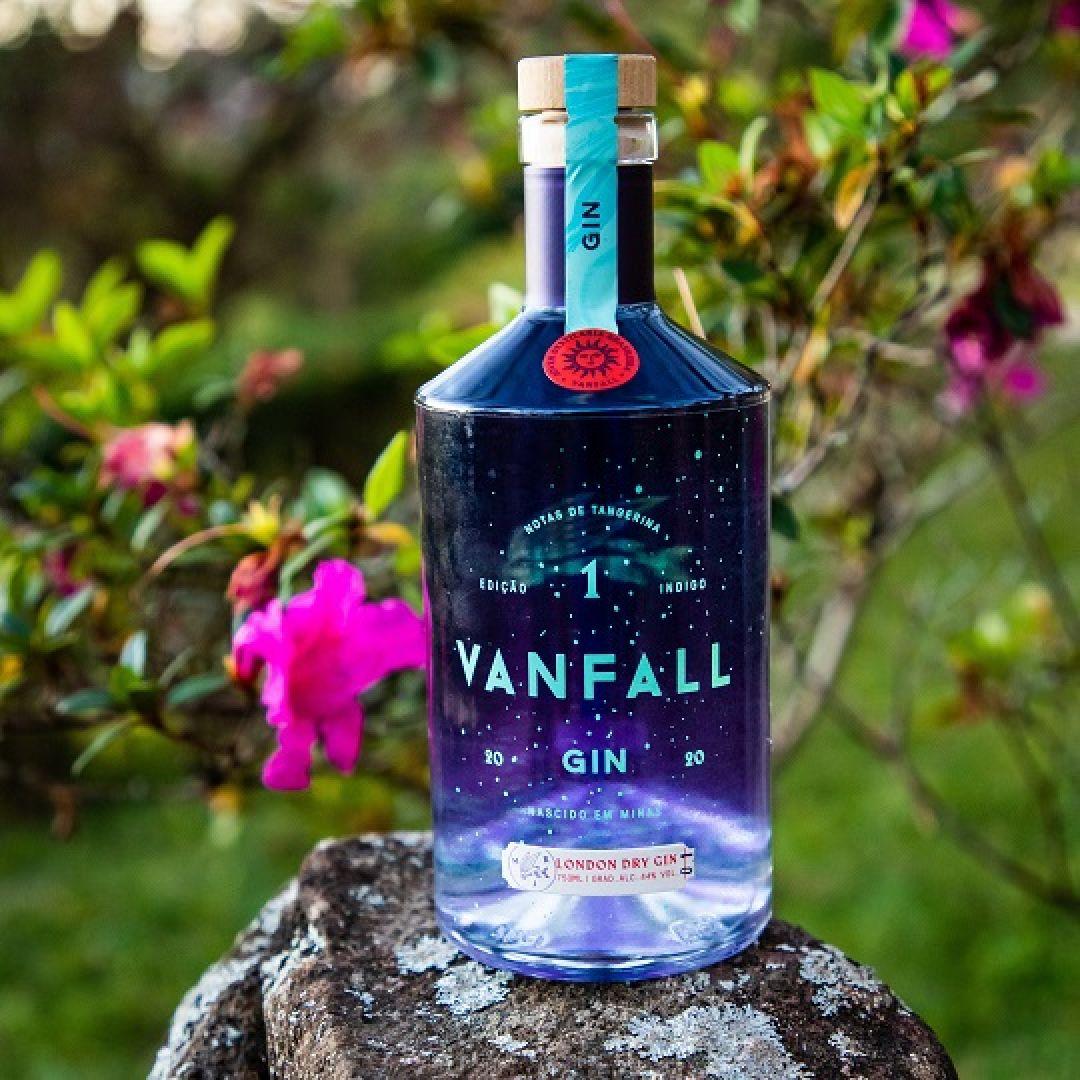 Gin Vanfall