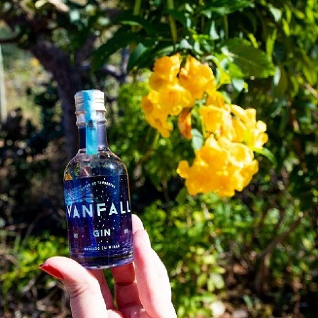 Mini Vanfall - 50ml