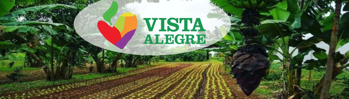 Projeto Vista Alegre