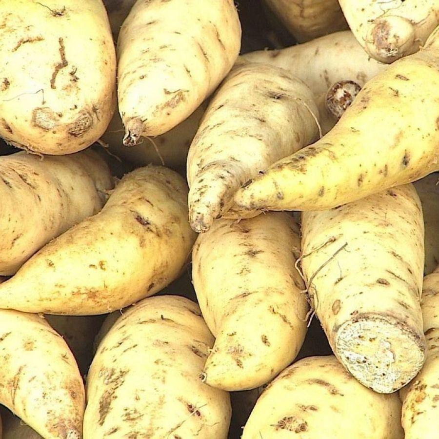 Batata doce comum orgânica Vista Alegre - 500gr
