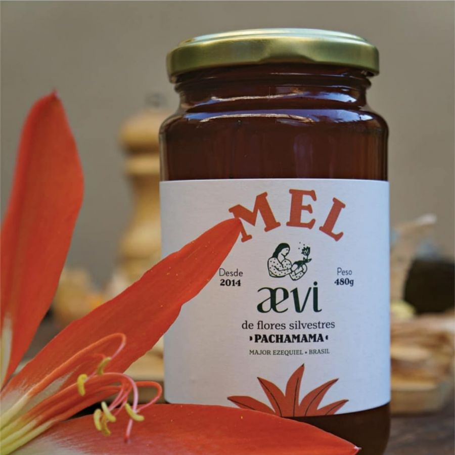 Mel Florada Silvestre Agroecologico Aevi - 4,5 Kg