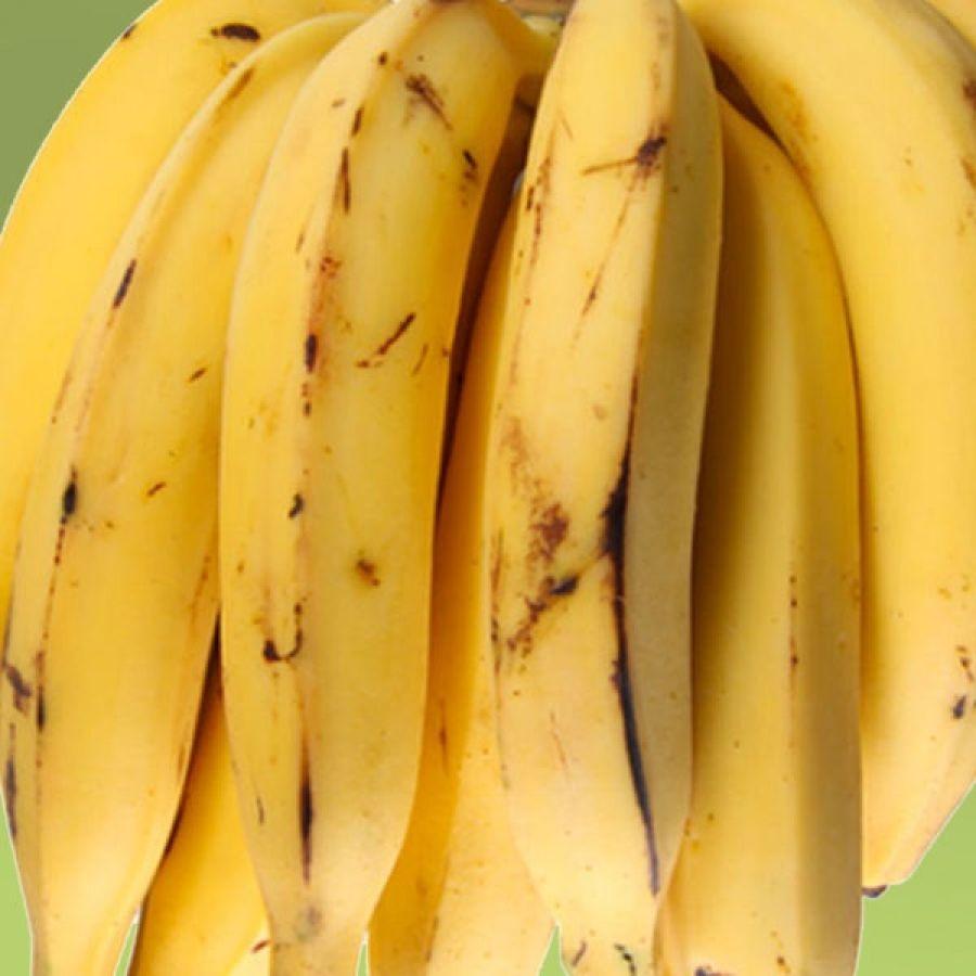 Banana da Terra Ecosagro - 1k