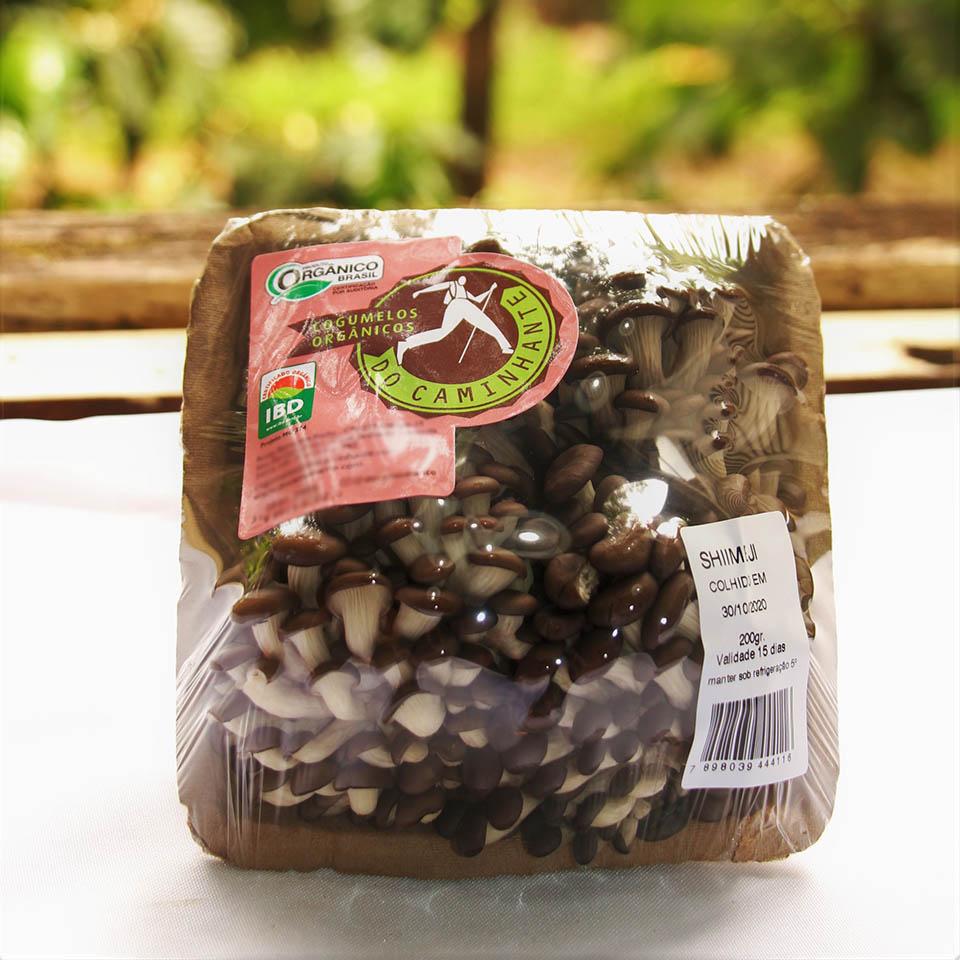 Cogumelo Shimeji Orgânico DoCaminhante