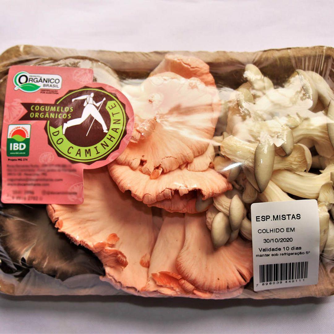 Mix de Cogumelos Orgânicos DoCaminhante