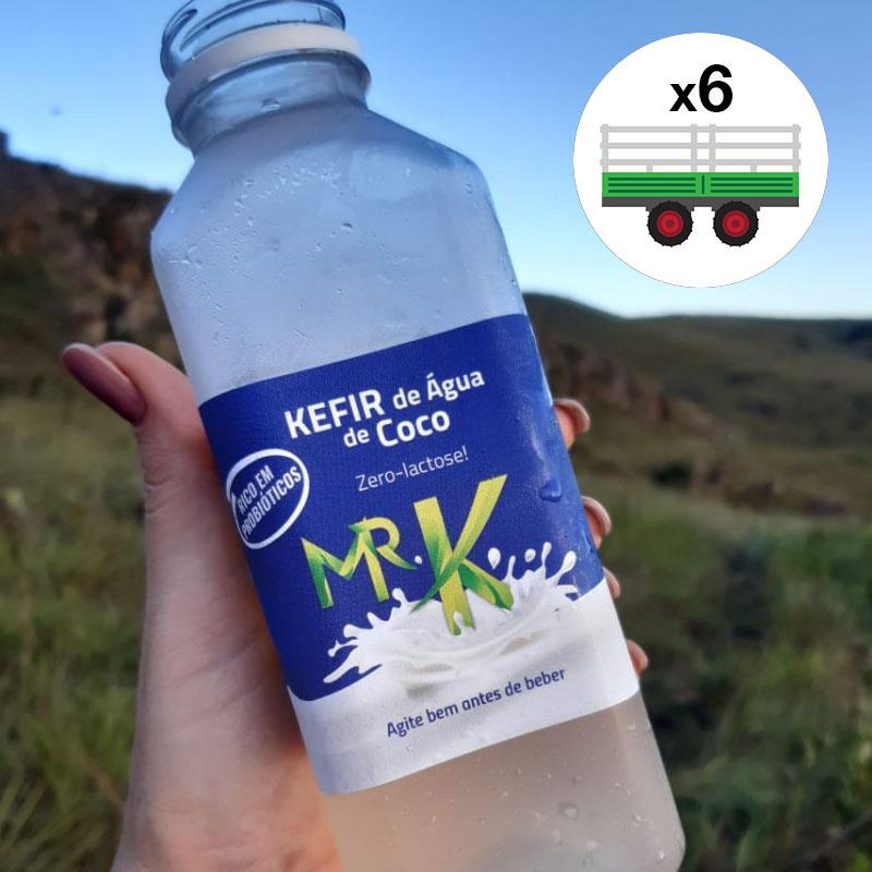 Kefir de água de coco Mr. Kefir 6un x 500ml